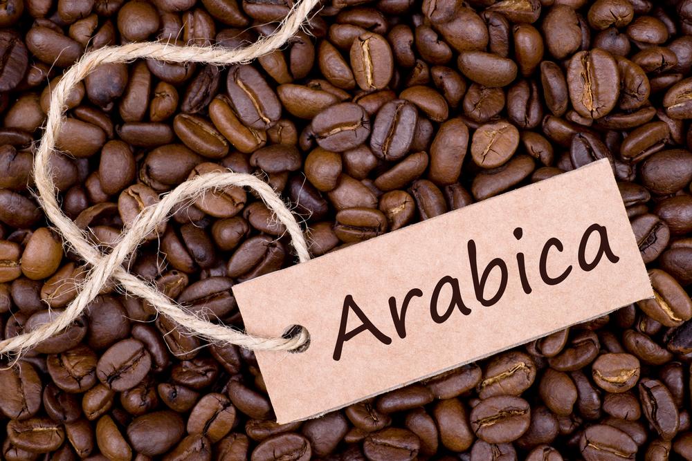 Arabika, Kopi Pertama di Dunia